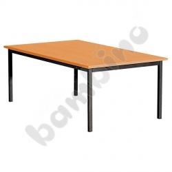 Stół świetlicowy Standard 180 x 80 cm